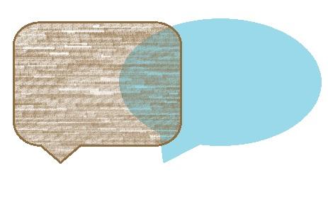 Lokalisatie in de internationale E-commerce: van de klantbeoordeling tot een actieve dialoog