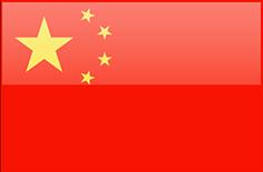 E-commerce: la Cina supera gli USA